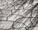 Cracked Mud and Shadows II